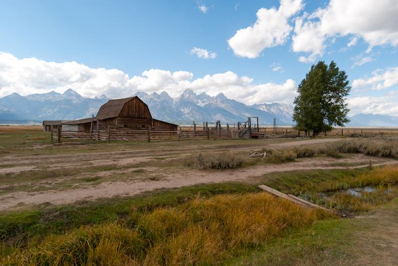 Mormon row Grand Teton