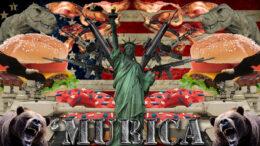 Dingen uit Amerika die we het meest missen